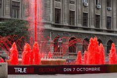 """""""True Blood"""" Water Fountain."""