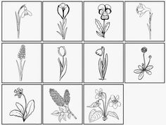 Kleine Bildchen zu den frühlingshaften Pflanzen   Passend zu den gestrigen Bildkarten habe ich noch kleine Bildchen zu den frühlingshaften...