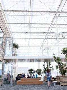 Escuela CAH en Droten - Noticias de Arquitectura - Buscador de Arquitectura