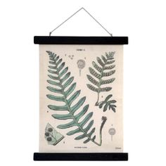 HK Living Small School Chart Style Fern Print: Printed cotton school chart style wall hanging. This botanical print is vintage inspired and will bring a touch of nature and old charm into your home all at once. The top and bottom of this cotton printed green leaf art is mounted in a black wooden frame and has a cotton rope hanging at the top making it easy to hang.