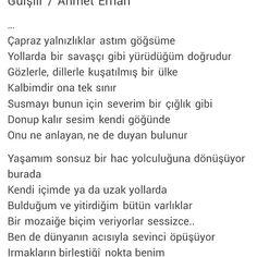 Gülşiir / Ahmet Erhan