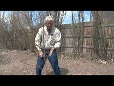 Pruning New Peach Trees