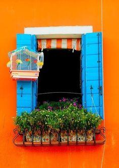 aqua shutters on bright orange wall