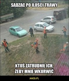 Very Funny Memes, Wtf Funny, Polish Memes, Funny Mems, Life Humor, Read News, Best Memes, Haha, Funny Pictures