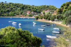 Toy Boats in Skiathos by Holfo, via Flickr