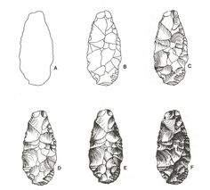 Sequential Steps in the Illustration of a Chipped Stone Artifact. Corsiglia & Rosen 1987:137