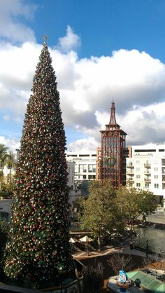 The Christmas tree on display at the Americana at Brand in Glendale, CA (near Los Angeles) is a magnificent tree. Our guests, a young family we brought to the mall so the kids could visit with Santa Claus, were impressed.