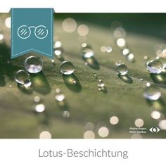 Lotus-Beschichtung Lotus, New Details, Diamond Earrings, Lotus Flower, Diamond Drop Earrings, Lily
