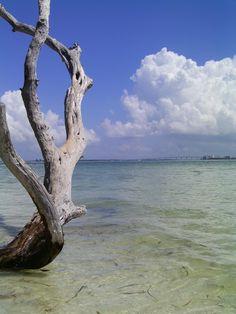 sanibel island <3