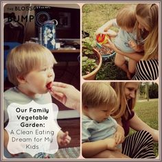 Our Family Vegetable Garden: A Clean Eating Dream For My Kids | The Blossoming Bump