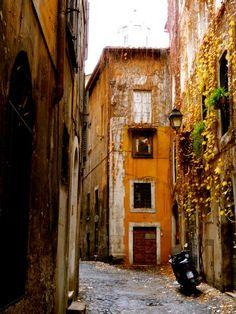 Rome by Miss Mikaela Greene