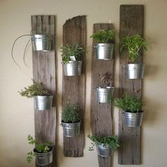 Reclaimed fence boards are re-purposed into an interesting arrangement for galvanised pots filled with assorted herbs for the kitchen.