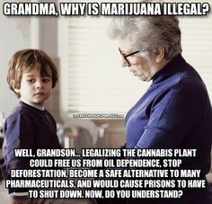 The Real Reasons Cannabis Is Illegal. How is it that alcohol is legal and causes more auto accidents and overall deaths per year than cannabis? Cannabis Plant, Cannabis Oil, Photoshop, Social Issues, Medical Marijuana, Marijuana Facts, Thought Provoking, In This World, Just In Case