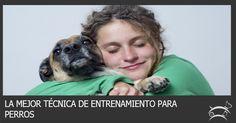 Descubre aquí cuál es la mejor técnica de entrenamiento para perros y empieza desde ya a convertir a tu mascota en un perro obediente y feliz. Ingresa Aquí >>> http://sobreperrosygatos.com/tecnica-entrenamiento-para-perros/