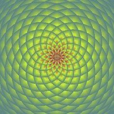 ea3813e362e8b839856843b16816fc06.jpg 320×320 pixels