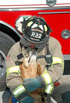 Trauma therapy dogs - provide comfort to victims such as children, who may not talk to adults.