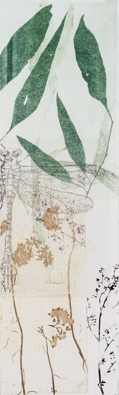 Trudy Rice DRAGONS & BANKSIAS SERIES Dragonfly & Dark Green Leaves