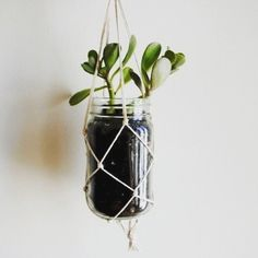 Pot gantung tuk hiasan rumah anda bahannya simple.. cuman dari botol bekas apakah kamu bisa membuatnya?  #kerajinan #kerajinantangan #diyproject #diycraft #potbunga #mediaunik #serbaunik