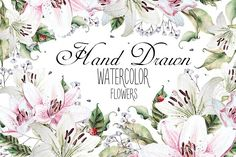Hand Drawn watercolor flowers lily by knopazyzy on @creativemarket