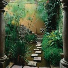 Glorious gardens in San Miguel: Papyrus grows tall in a pond near the home's entry. The stone-clad stairway leads to a rooftop deck and guest room.