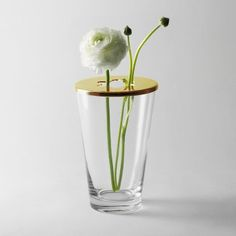 Focus Vase: Thanks to the cleverly designed hole in its lid, the Focus Vase is perfect for both a single flower as well as a whole bouquet. Swedish Design, Nordic Design, Scandinavian Living, Scandinavian Design, Design House Stockholm, Design3000, Shops, Season Colors, Design Awards