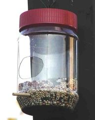 Peanut butter plastic jar recycled bird feeders!
