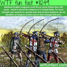English longbow facts - WTF fun facts