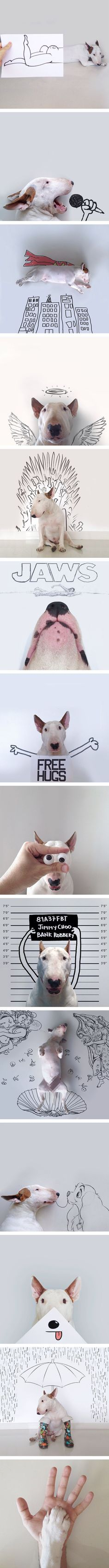 Such fun, creative, clever illustrations with Bull Terrier. And they are awesome.