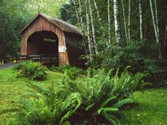 Yachats River Covered Bridge in Siuslaw National Forest, North Fork, Oregon