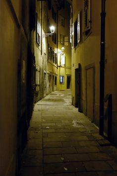 Trieste Out Of My Mind, Trieste, Travel Agency, Italian Style, Trekking, Nostalgia, Ink, Country, Night