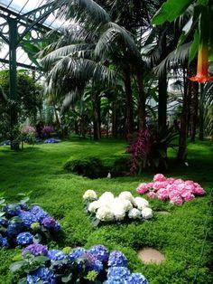 Luxury Botanical Garden Stuttgart Germany