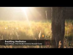 Guided Meditation from UCLA Mindfulness Center – Mental Health & Mindfulness Breathing Meditation, Mindfulness Meditation, Guided Meditation, Ucla Health, Mental Health, Sunshine Pictures, Research Centre, Summer Solstice, Happy Summer