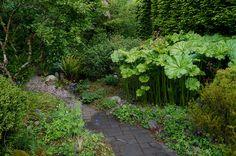 Perennials bordering a pathway