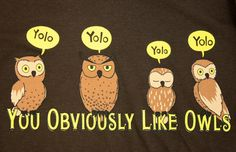 yes. this is totally what YOLO should stand for. | You Obviously Like Owls #QuestionableContent