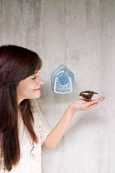 Colectivo da Rainha | plastic bird house