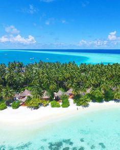 The Maldives Island - Vilureef Maldives