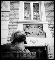 Münster auf den 2. Blick : Wachhund im Kreuzviertel. #Münster #Germany