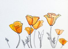 Image result for stylized california poppy drawing