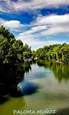 Aranjuez, Comunidad de Madrid, el río Tajo a su paso por los jardines del Príncipe. Aranjuez, Community of Madrid, the Tagus river as it passes through the gardens of the Prince.