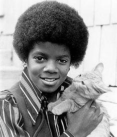 La cara del gato jajaja MICHAEL JACKSON