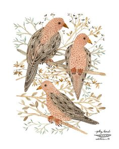 mourning doves art giclee print reproduction by GollyBard on Etsy