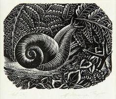 Prints & Graphics - Ernest Mervyn Taylor - Page 9 - Australian Art Auction Records New Zealand Art, Nz Art, Maori Art, Australian Art, Bird Drawings, Global Art, Art Auction, Art Market, Art Boards