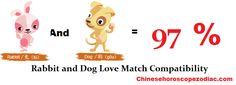 Rabbit Dog Compatibility Love Match