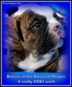 """""""The Power of Prayer"""" Kenna's son on 5-29-15"""