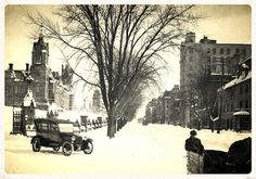 Elms were so important to the canopies of Canadian cities they once provided from 50 to 80 per cent of the shade Photos Du, Old Photos, Ol Days, Photo Archive, Ottawa, Historical Photos, Ontario, Old Things, Canada