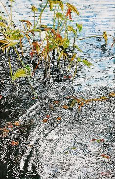 micheal zarowsky - infinity rings w pickerel weed 3 devils lake x watercolour painted directly on gesseod birch panel Watercolor Landscape, Watercolor And Ink, Landscape Art, Rain Art, Water Ripples, Contemporary Artwork, Cool Paintings, Water Lilies, Infinity Rings