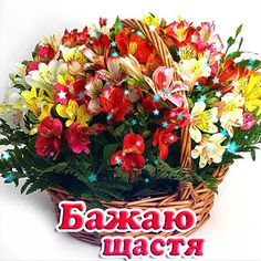 Floral Wreath, Happy Birthday, Wreaths, Decor, Happy Brithday, Floral Crown, Decoration, Door Wreaths, Urari La Multi Ani