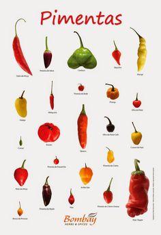 Pimenta no blog dos outros é refresco! | Viviendo en el México Mágico!