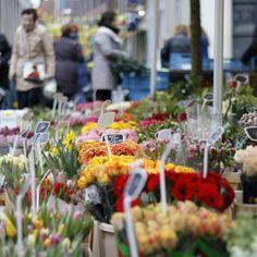 Zwolle market
