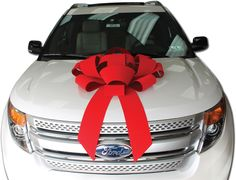 Add a touch of class with our 30 inch velvet car bows.  100% Made in USA.  Exclusively from Car Bow Store.